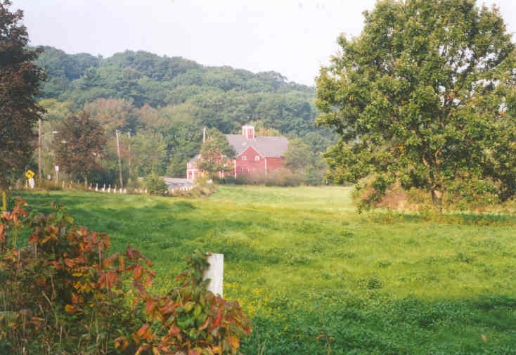 A lush field with a red barn in the background