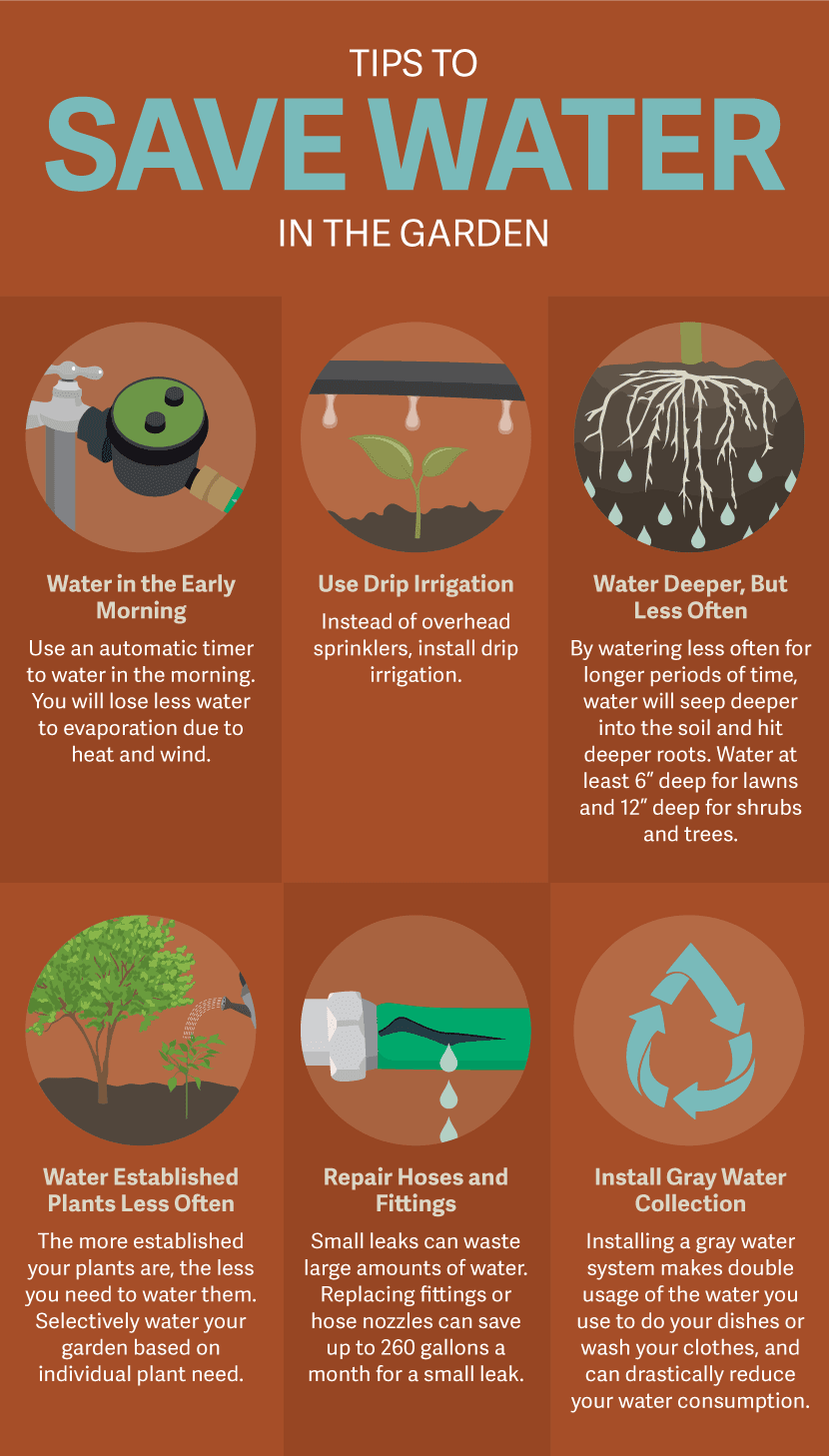 Save Water infographic
